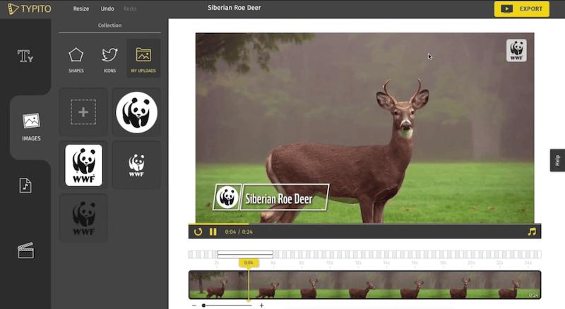Typito | Create stunning text videos online